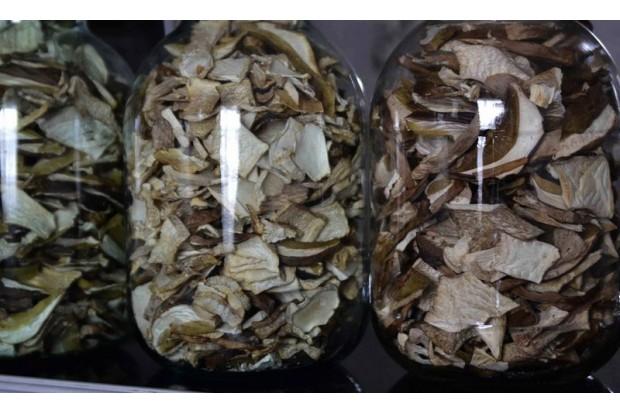 Где купить сушёные грибы белый, подосиновик, подберёзовик