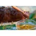 Экологически чистый мёд