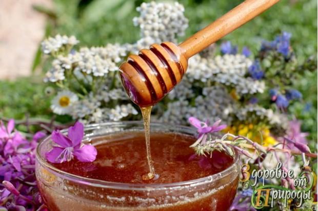 Мёд натуральный купить с частной семейной пасеки из экологически чистого места