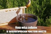 Мёд в сотах с нашей пасеки