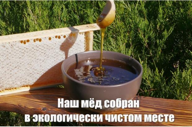 Сотовый мёд купить в рамках