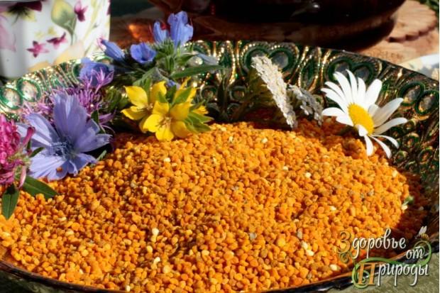 Пыльца пчелиная Москва по доступной цене