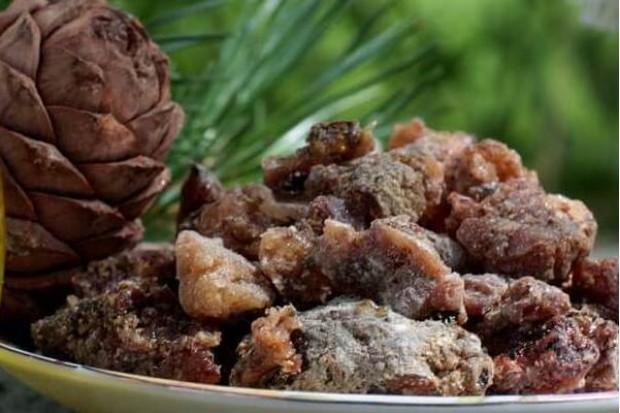 Кедровая смола живица 100% натуральная