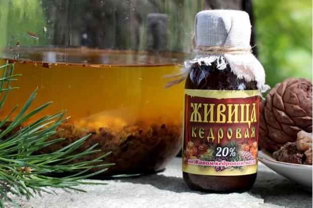 Живица кедровая Москва высшего качества купить