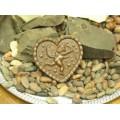 Живой шоколад ручной работы (56)